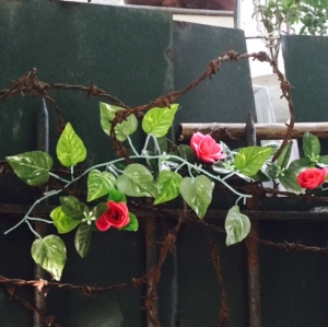 rose wire
