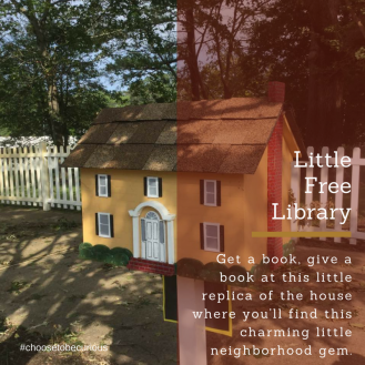 rbsh-a-little-free-library-1